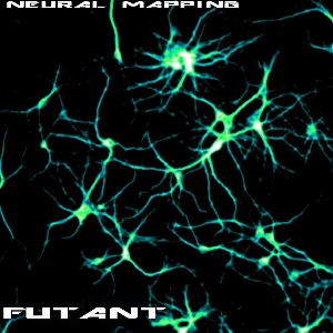 Neural Mapping Cover